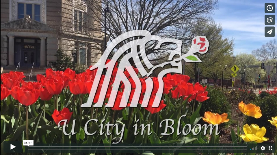 U City In Bloom